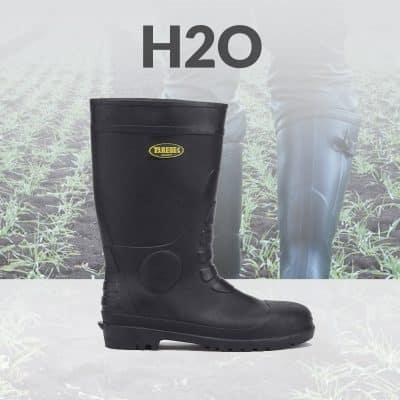 Linea H2O